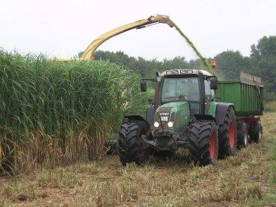 Abhäckseln zur Biogasgewinnung